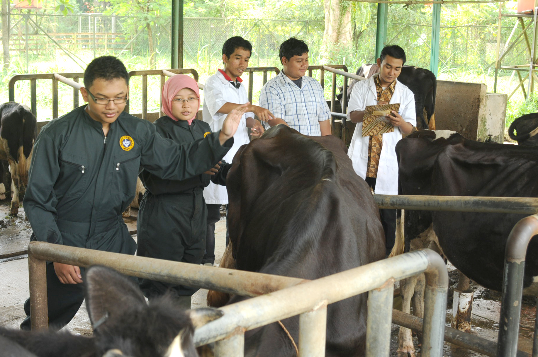 Faculty of Animal Science